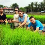 Visitors and Khmer locals at Koh Phdao farming rice