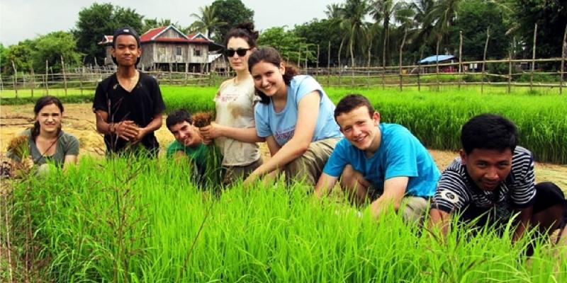 Visitors and Khmer locals at Koh Phdao farming rice
